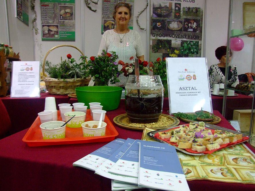 Gombászklub és gyógynövényklub a Természetgyógyász Napokon – Slow Food-dal karöltve