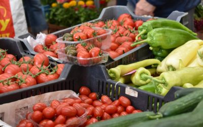 Telefonon rendelt élelmiszer ingyenes kiszállítása a piaci árusok és az önkormányzati intézmények összefogásával