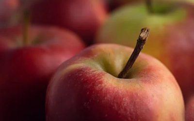 Jonatán alma a szerdai piacon!