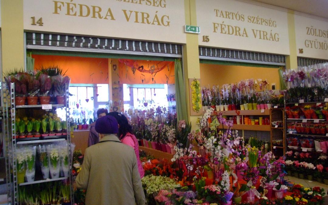 Fédra virág bolt